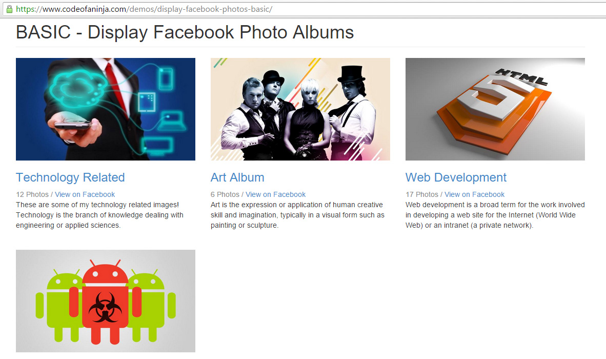 Display Facebook Photos on Website - Demo Screenshot