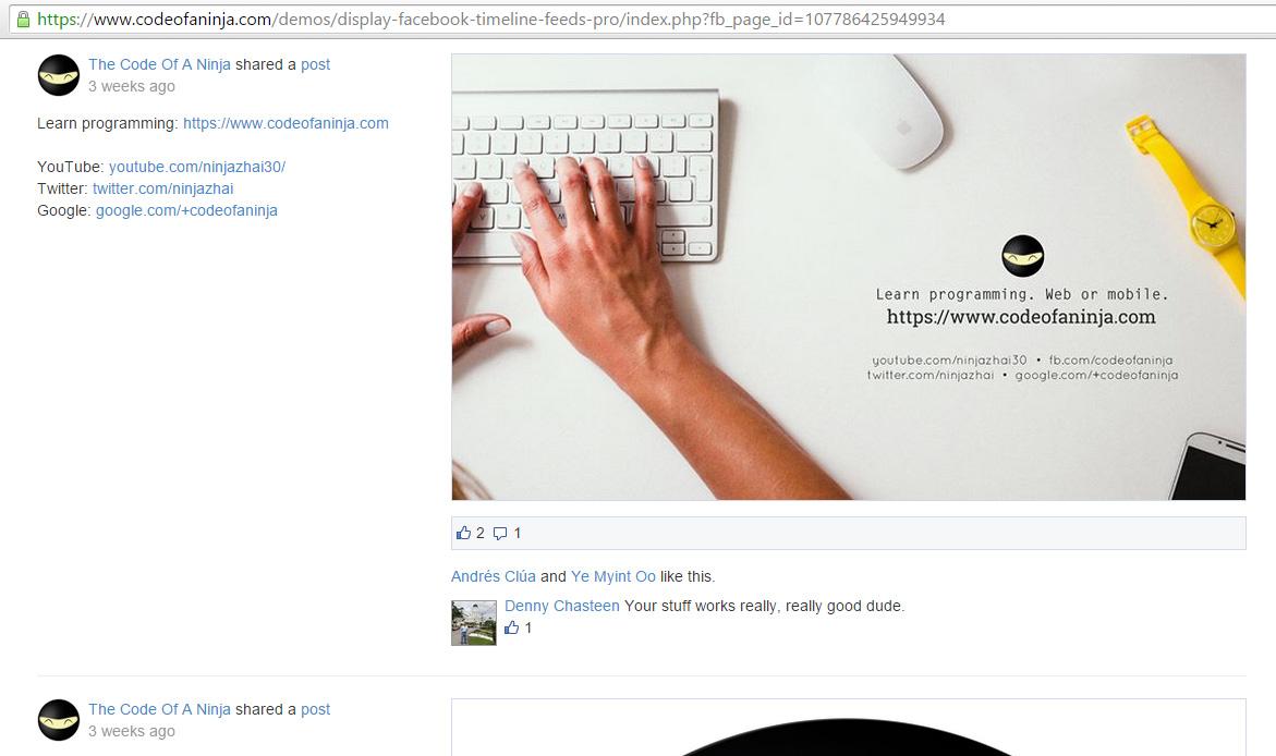 display-fb-timeline-feed-PRO-demo-screenshot